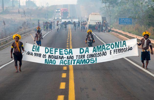 Au Brésil, ces Indigènes bloquent une route contre la déforestation et le
