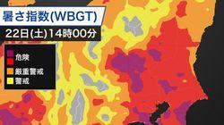 関東は今日も猛暑…東京都と神奈川県で熱中症警戒アラート発表