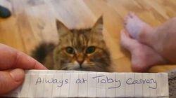 肉好きの猫、近所のレストランでこっそり外食→手紙で告げ口され飼い主にバレる