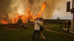Las devastadoras imágenes que deja el fuego en