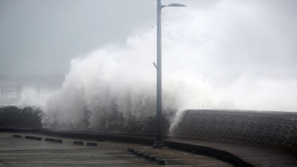 태풍 '바비'로 1633가구가 정전되고 29명이 대피했다 (피해 사진