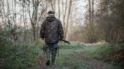 Macron interdit la chasse à la glu pour les grives et les merles cette
