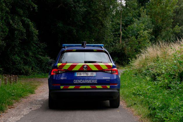 Dans le Vaucluse, la gendarmerie a ouvert une enquête après avoir découvert une jument...