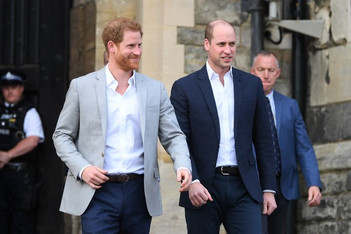 Harry and William issued a joint statement last week giving an update on a project in memory of Princess Diana.