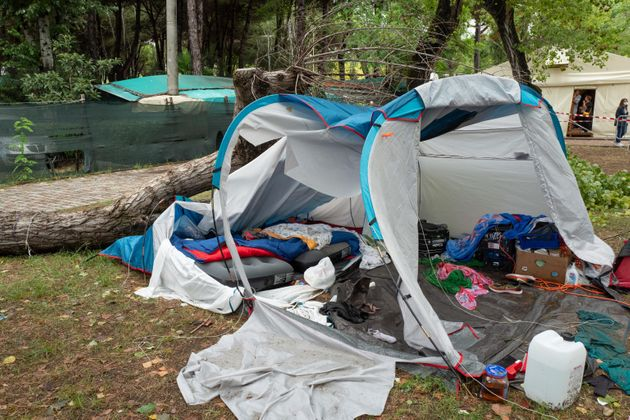 Albero su tenda durante