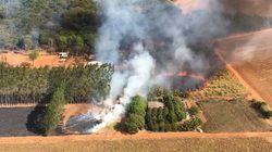 'É nosso pior ano do fogo aqui', diz bombeiro no