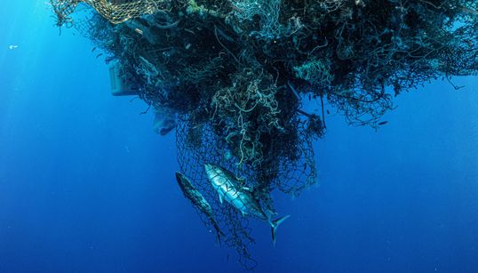 Don't Call It A Garbage Patch: The Truth About Cleaning Up Ocean