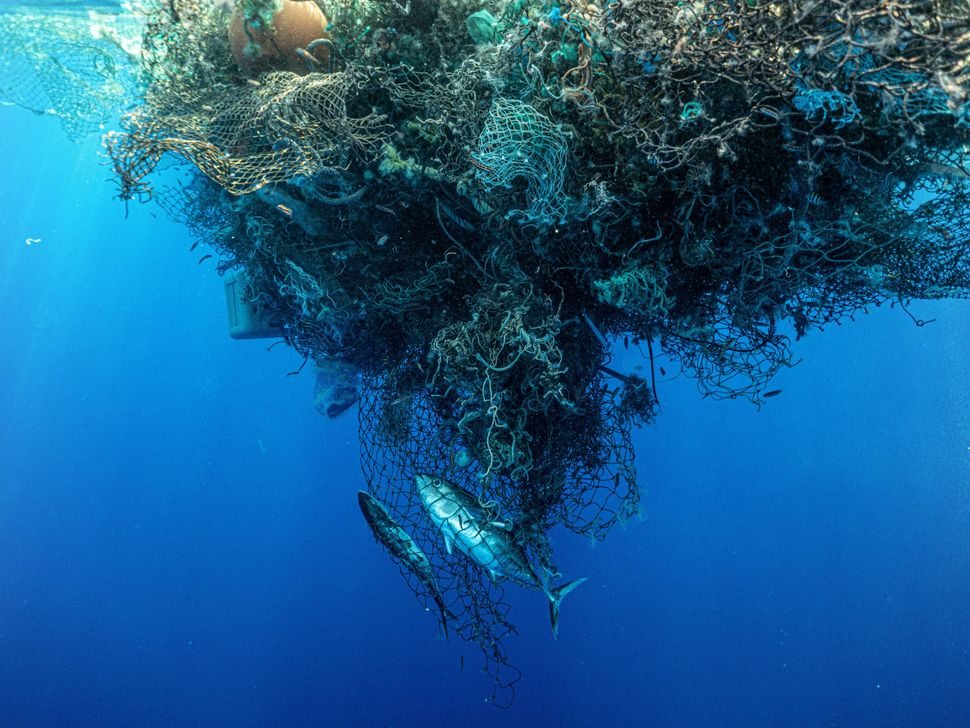Abandoned fishing nets are the main source of plastic pollution in the Pacific Ocean.