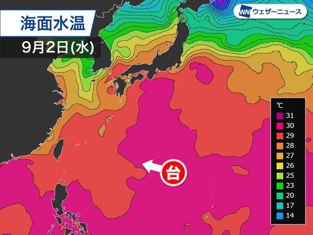 海面水温の解析(ピンクが30℃以上の海域)