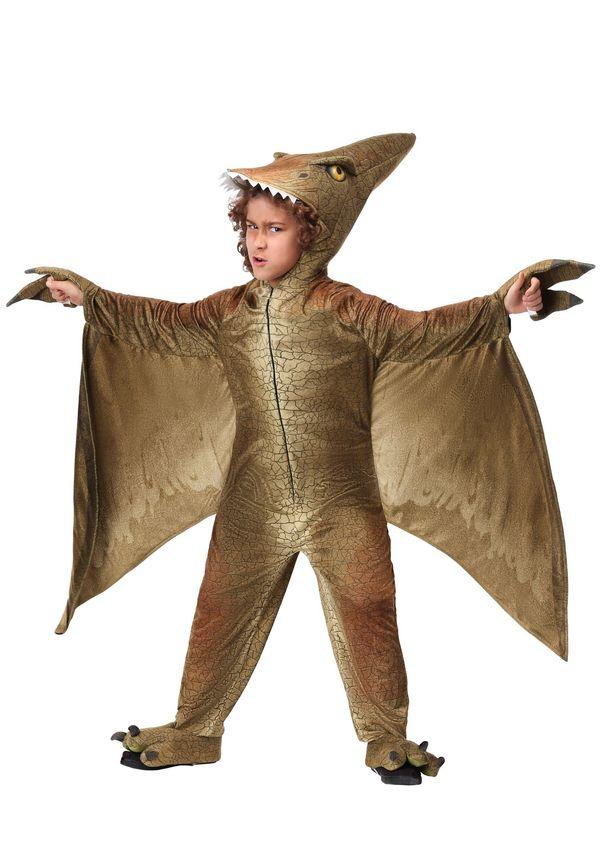 "This <a href=""https://www.halloweencostumes.com/child-s-pterodactyl-costume.html"" target=""_blank"">kiddie pterodactyl costume<"