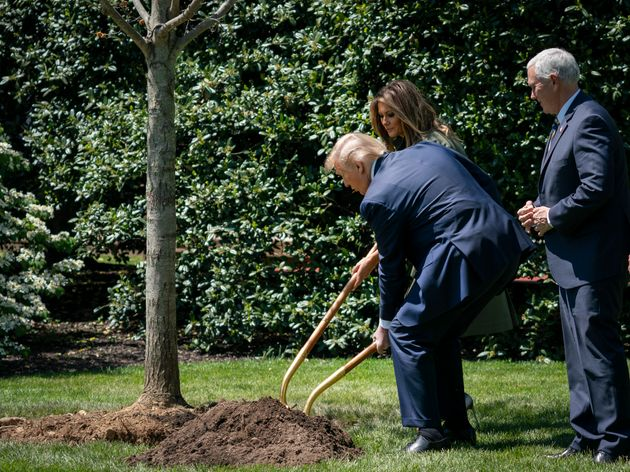 President Donald Trump and first lady Melania Trump participate in a tree-planting ceremony in recognition...