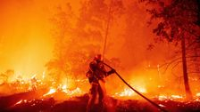 A Record 2 Million Acres Have Been Burned By California Wildfires This Year thumbnail