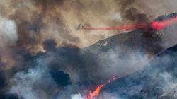 カリフォルニアの山火事、1件は性別発表パーティーが原因で発生していた。当局が発表