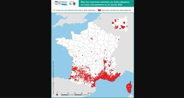 L'implantation du moustique tigre à l'échelle communale à la date du 1er janvier