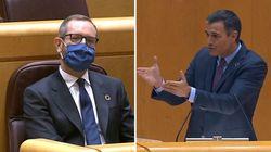 Pedro Sánchez se refiere así a Podemos en el Senado y deja en evidencia al