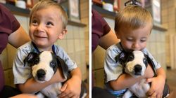 """Bimbo adotta un cane nato con la sua stessa malformazione al labbro: """"È stato subito"""