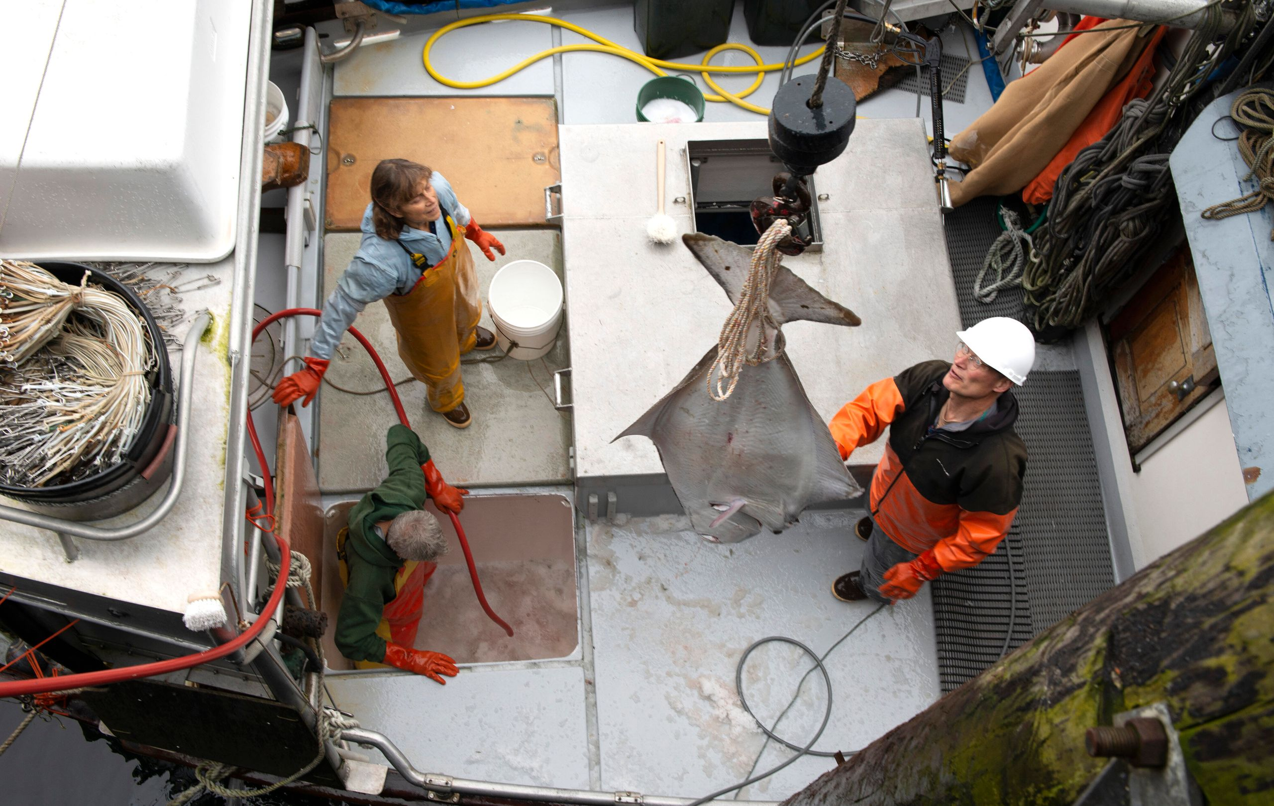 Linda Behnken (center), with her husband, Kent Barkhau (left), and Terry Perensovich unload halibut from the fishing vessel W
