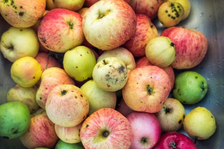 Spots don't mean a fruit or veggie is rotten and can easily be cut out before consuming.
