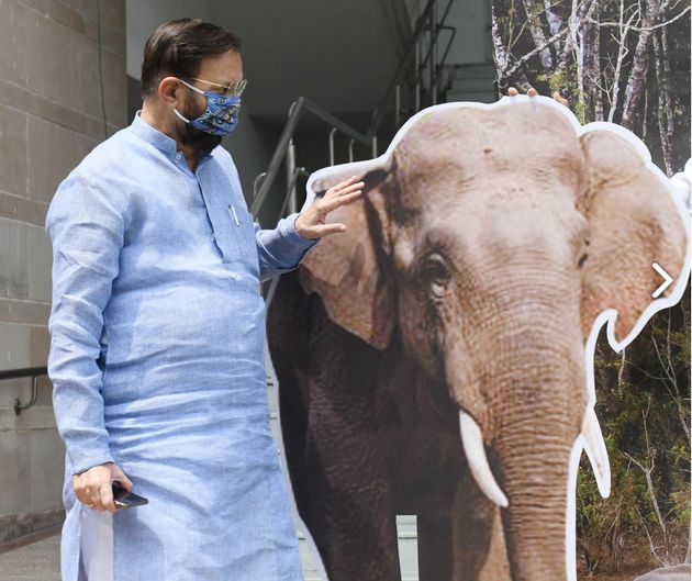 Union environment minister Prakash Javadekar with a cardboard elephant at a ceremony to mark the World...