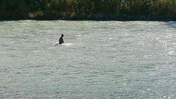 Il papà che ogni giorno cerca nel fiume il corpo della figlia 15enne scomparsa