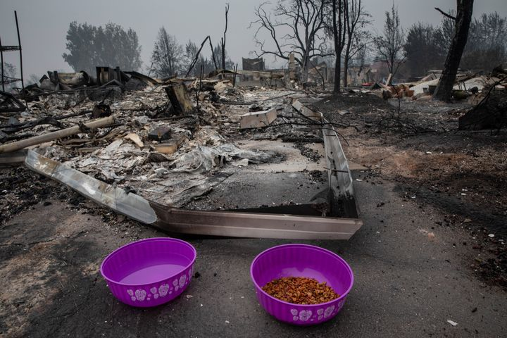 Cat food and water are seen as residents try to find lost pets who went missing during wildfires in Talent, Ore., Friday, Sep