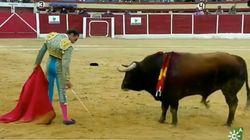 Enrique Ponce desconcierta hasta al toro con lo que hace en esta imagen: va por Ana
