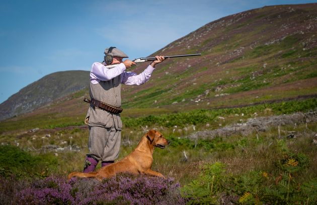 Grouse shooting in Scotland as 'the Glorious 12th', the official start of the grouse shooting season, got underway