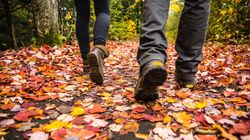 Canadians Can Expect A 'Fall To Savour' This Year, The Weather Network