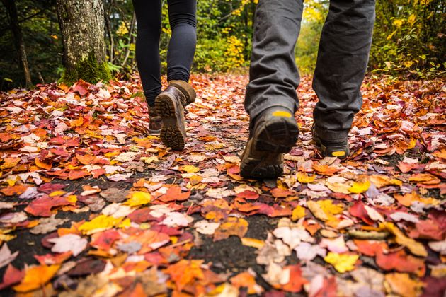 A young couple goes hiking in Canada during the fall season. The Weather Network says this autumn will...