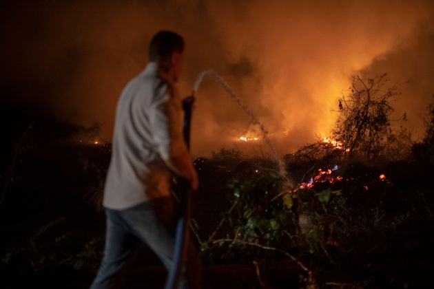 Incêndios no Pantanal causam devastação, matam animais e emitem alerta