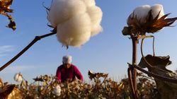 「現代の奴隷」。アメリカが新疆ウイグル自治区などの「強制労働」疑いの製品を輸入禁止