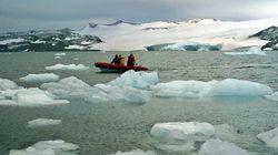 Un bloque de 110 km de hielo se desprende en Groenlandia y dispara las