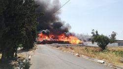 Φωτιά σε αποθήκη ξυλείας στον