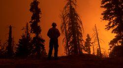 Les immenses feux de forêt font sentir leur présence jusqu'au