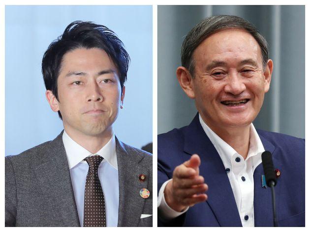 第99代総理大臣に指名された菅義偉氏(右)と自民党の小泉進次郎氏(左)