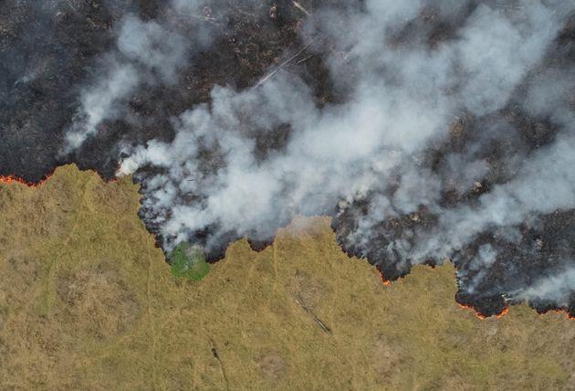 Ambientalistas culpam as políticas do presidente Jair Bolsonaro, que defende a exploração...