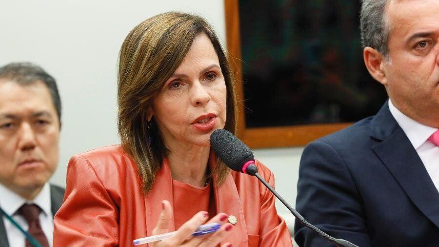 Coordenadora da bancada feminina na Câmara, deputada Professora Dorinha