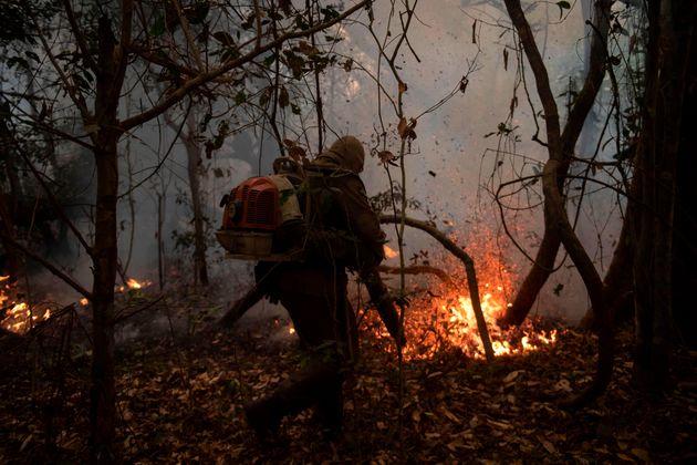 Bombeiros de Mato Grosso combatem chamas no