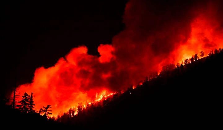 The Bobcat Fire erupted on September 6 in the Angeles National Forest and has become one of the largest fires in Los Angeles