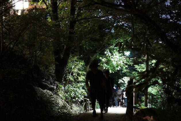 21일 저녁 대구 남구 안지랑골에서 사람들이 줄지어 나무 계단을 오르고
