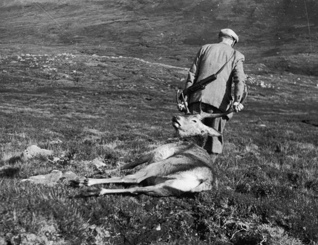 Hundreds Of Deer Hunters Accused Of Ignoring New Covid Rules