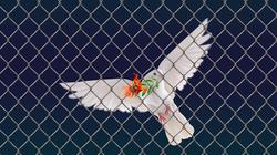 ¿Tragedia griega? No: europea y