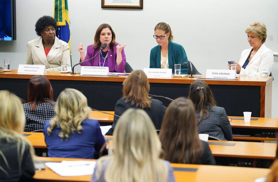 As mulheres são 52% do eleitorado brasileiro, mas quando se mede a presença nos cargos...