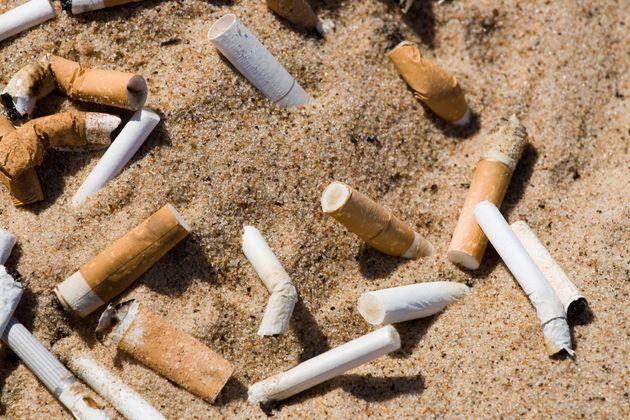 모래에 파묻힌
