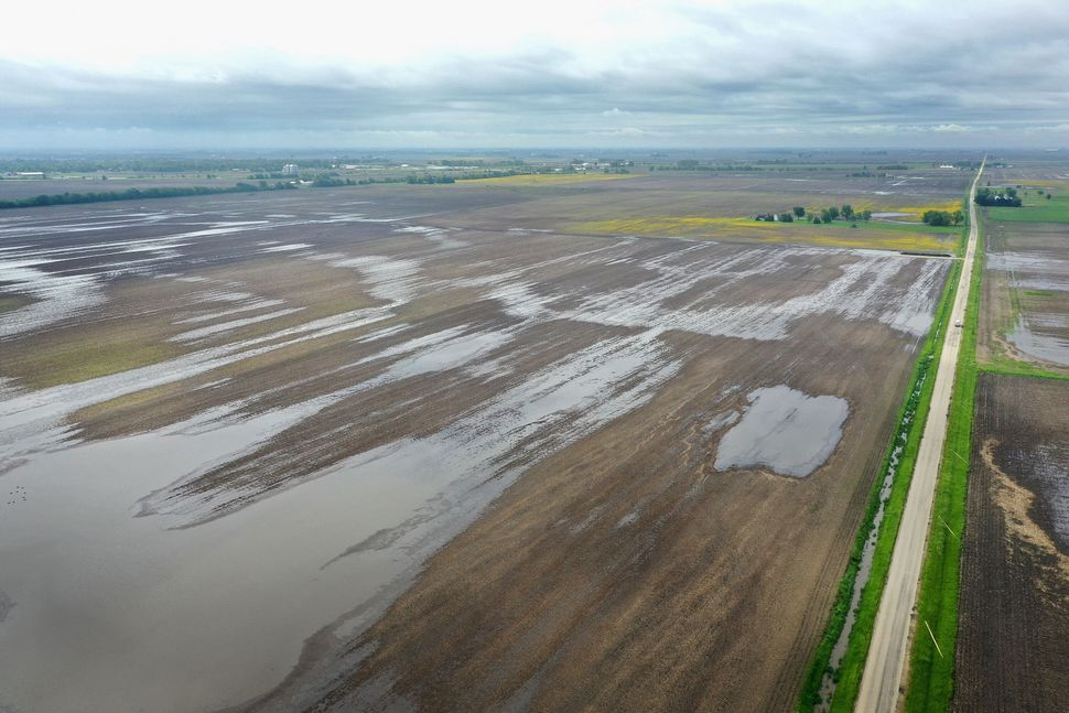 Water pools in rain-soaked fields on May 29, 2019, near Gardner, Illinois, after near-record rainfall in the state caused far