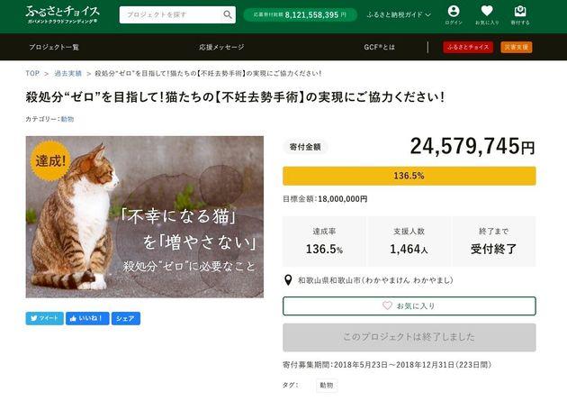 和歌山市がクラウドファンディングで「犬猫の不妊去勢手術」のための資金を募集した告知ページ
