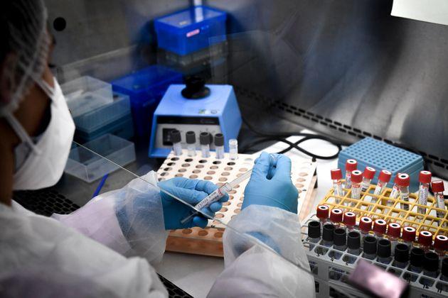 Un technicien préparant des échantillons pour des tests PCR au laboratoire d'analyse Eylau...