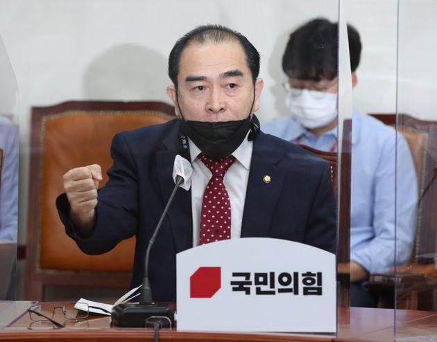 태영호 국민의힘 의원이 26일 오전 서울 여의도 국회에서 열린 '북한의 우리국민 사살 및 화형 만행 진상조사 TF 제1차회의'에서 주먹을 불끈 쥐며 발언을 하고