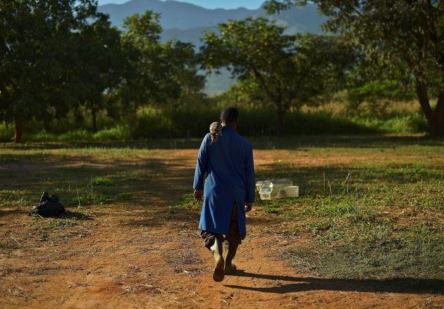 地雷を探索するアフリカオニネズミは、カンボジア、ラオス、ベトナム、モザンビークなどの地域で働いている