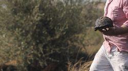 Υπό έλεγχο η πυρκαγιά σε δασική έκταση στον Βύρωνα